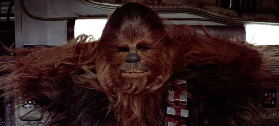 The Tragic History of Chewbacca